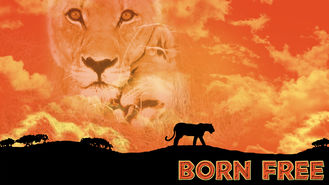Is Born Free on Netflix?